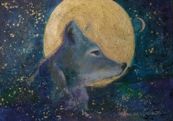 Coyote Moon - SOLD