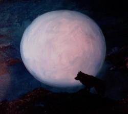 Lone Wolf - ?